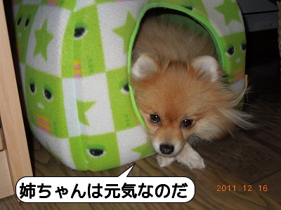 20111216_004.jpg