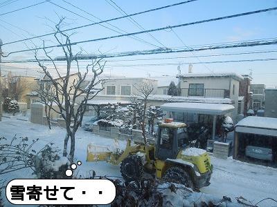 20111223_002.jpg