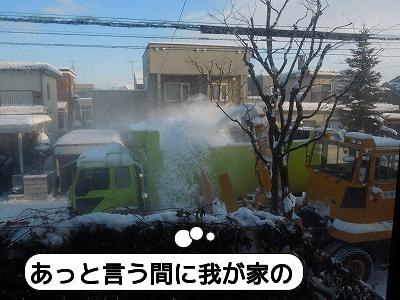 20111223_004.jpg