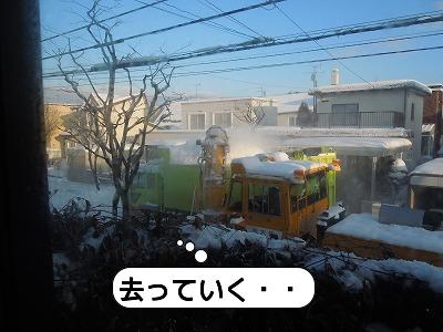 20111223_005.jpg