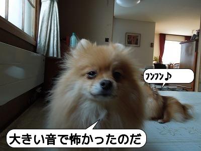 20111223_006.jpg