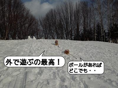 20111223_007.jpg