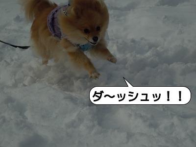 20111223_010.jpg