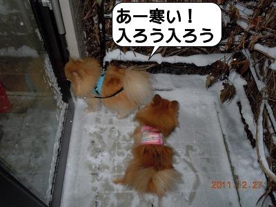 20111230_002.jpg