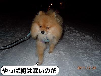 20111230_003.jpg