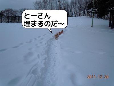 20111230_005.jpg