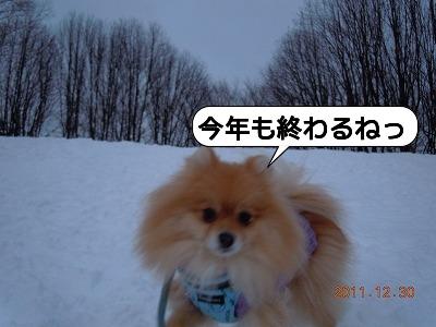 20111230_006.jpg