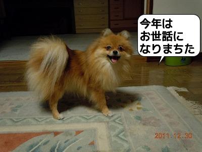 20111230_008.jpg