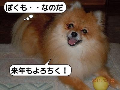 20111230_009.jpg