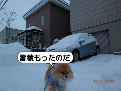 20120102_001.jpg