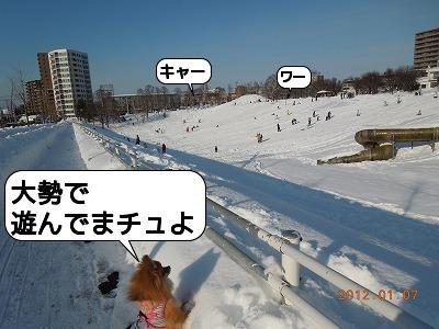 20120107_004.jpg