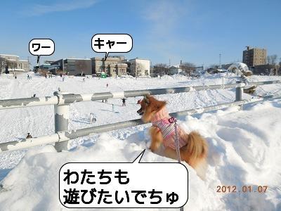 20120107_005.jpg