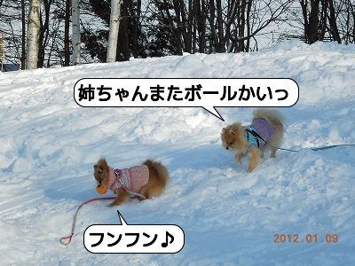 20120109_000.jpg