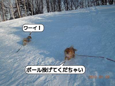 20120109_0005.jpg