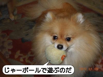 20120109_005.jpg