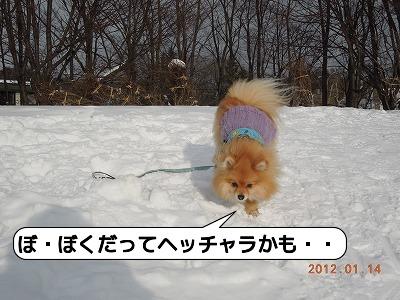 20120114_002.jpg