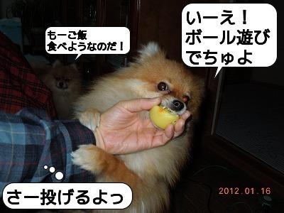 20120116_003.jpg