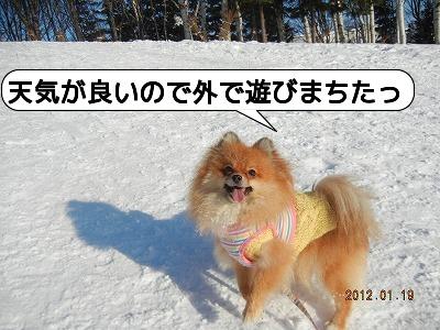 20120119_002.jpg