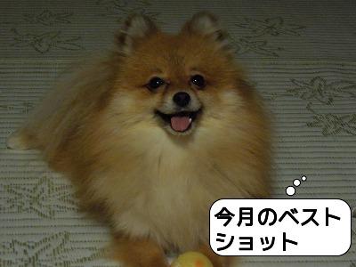 20120125_001.jpg