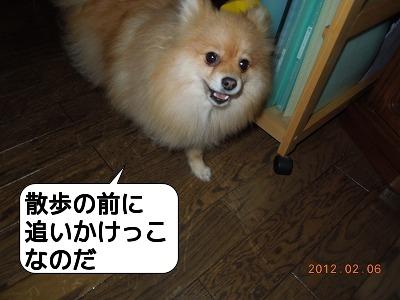 20120206_002.jpg