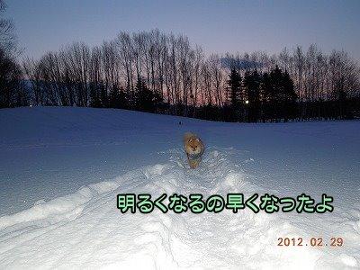 20120229_000.jpg