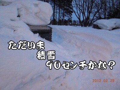 20120229_006.jpg