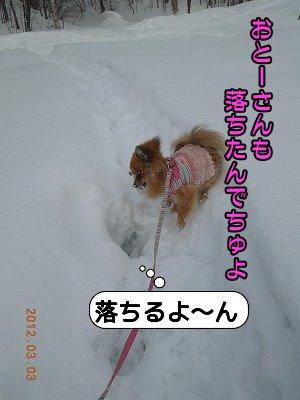 20120304_002.jpg