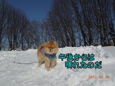 20120304_006.jpg