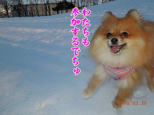 20120322_004.jpg