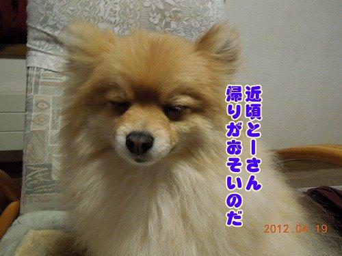 20120419_02.jpg