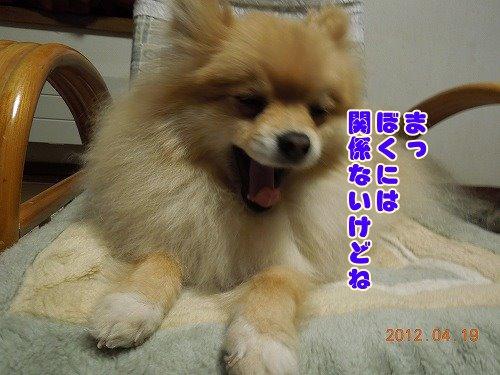 20120419_06.jpg