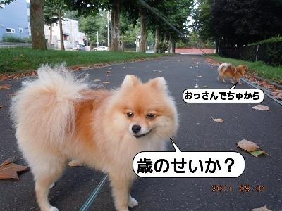 3DSCN3470.jpg