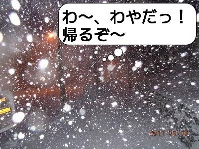 ADSCN8497.jpg
