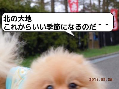 BDSCN2140.jpg