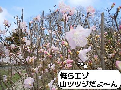 DSCN1596.jpg