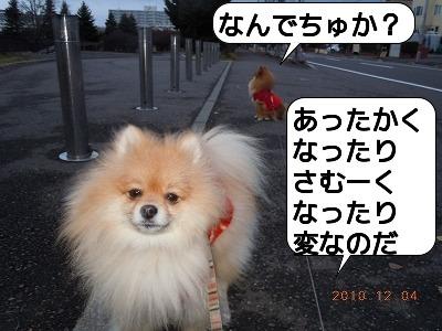 DSCN2022.jpg