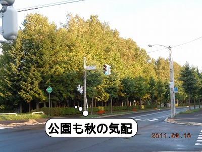 DSCN3686.jpg
