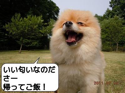 DSCN3766.jpg