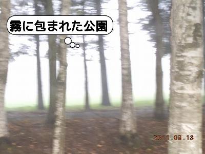 DSCN3817.jpg