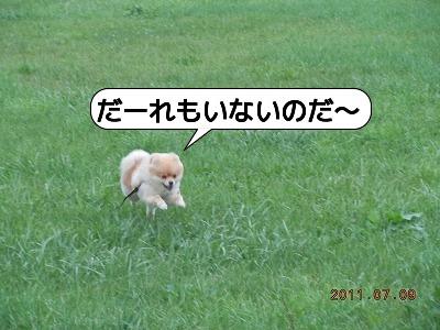 DSCN4114.jpg
