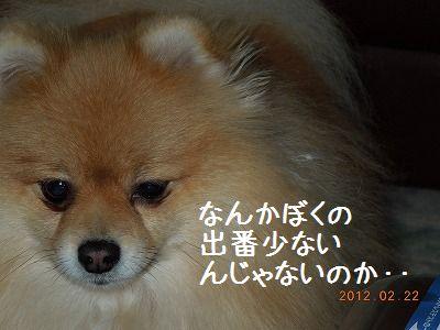 DSCN4415_004.jpg