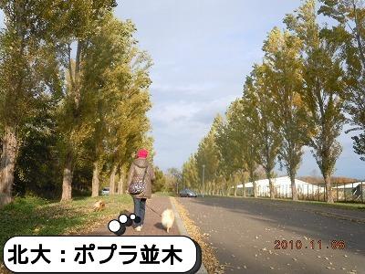 DSCN7464.jpg