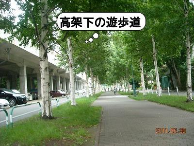 DSCN8890.jpg