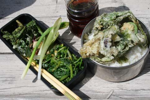 山菜ランチ
