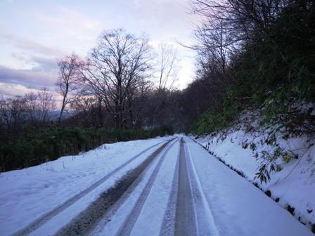 氷ノ山林道積雪