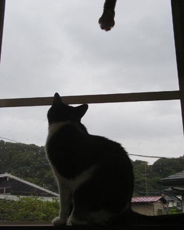 kegu_100812_01.jpg