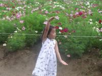 踊る沙代子4
