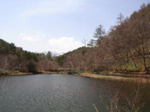 RIMG4601_1.jpg
