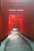 日枝神社 稲荷坂