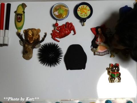 マグネットコレクション (1)